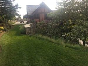 Timbers - Hali Beckman landscape architect